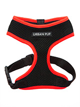 Active Mesh Neon Red Harness - Get fit, stay safe, stay seen. Treat your training buddy to an attractive new Active Mesh Harness with a dash of sporty neon to compliment your keep fit gear. But also great for regular walkies.High visibility Active Mesh Neon Harnesses provide the ultimate in comfort and safety, featuring a breatha...