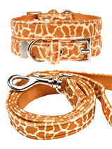 Giraffe Print Fabric Collar & Lead Set - Our Faux Giraffe collar & lead set is a contemporary animal print style and is right on trend. It is a contemporary style and the pattern is on trend. It is lightweight and incredibly strong. The collar has been finished with chrome detailing including the eyelets and tip of the collar. A matching l...